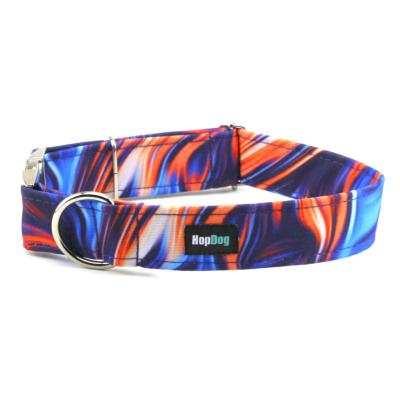 Collier ACTIVE DOG Ebru Bleu-orange