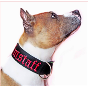 Collier AMSTAFF rouge